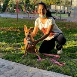 Mercedes Adiestramiento Canino en Villa Devoto